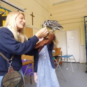 Owl Visit